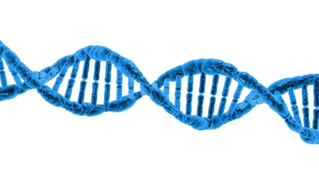 biologia metodo di studio
