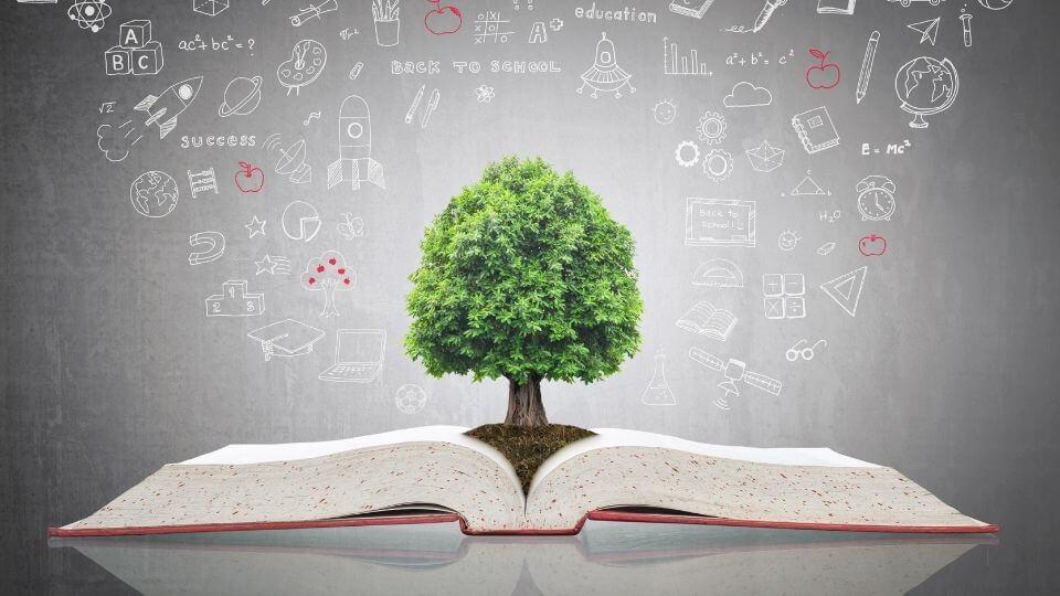 Educazione civica come studiarla per i test universitari